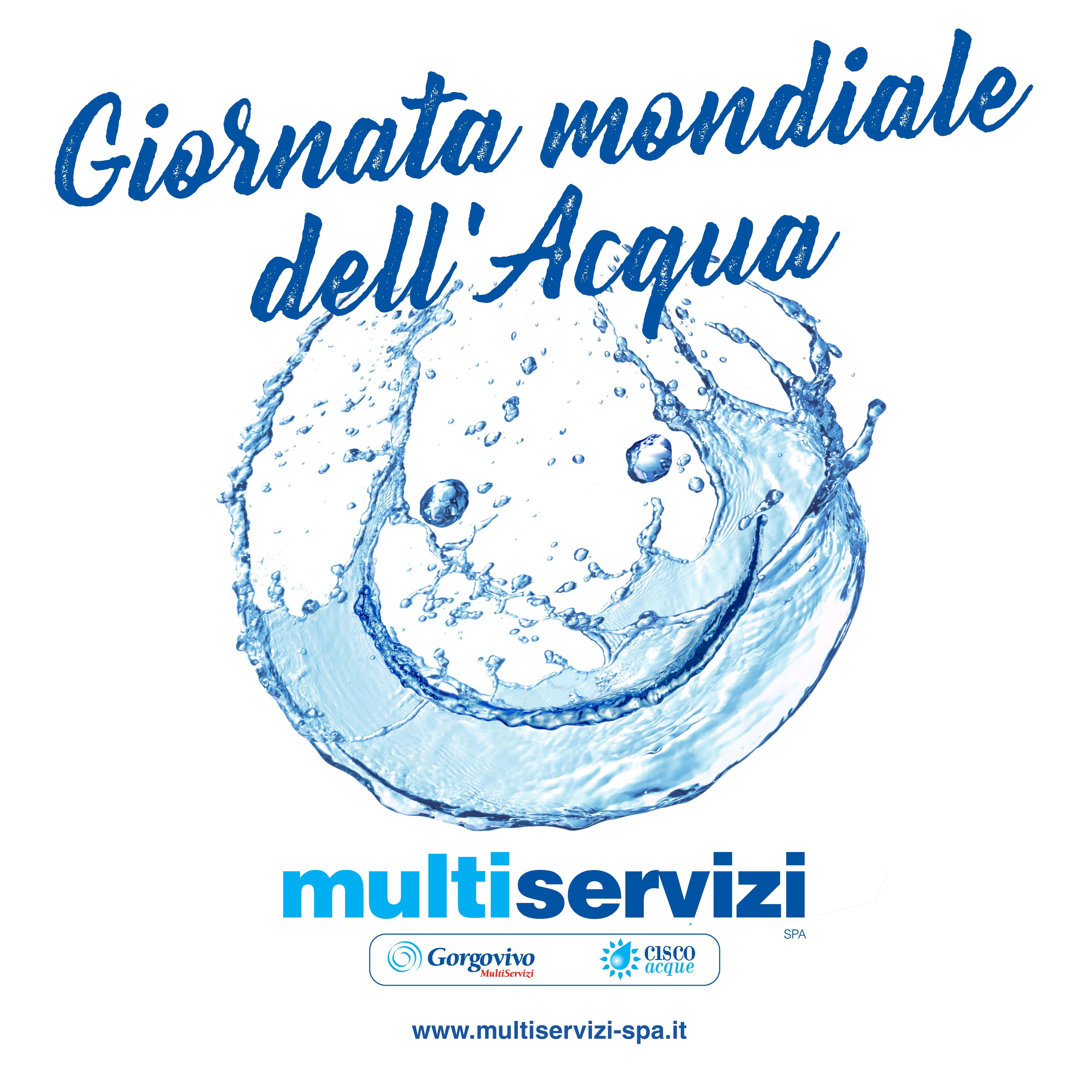 giornata mondiale dell u0026 39 acqua